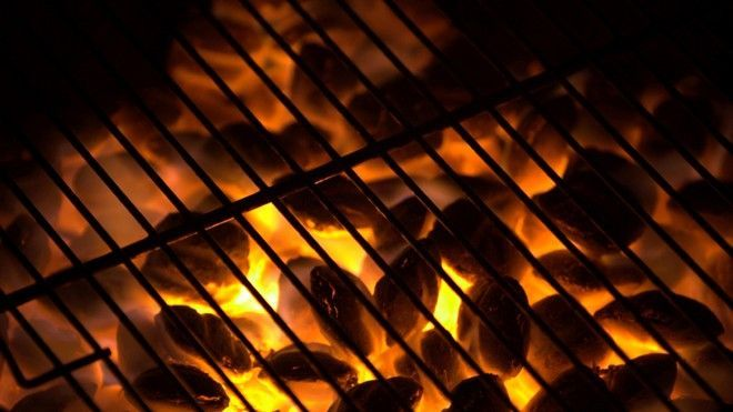Gas vs. charcoal: top grilling tips from the pros