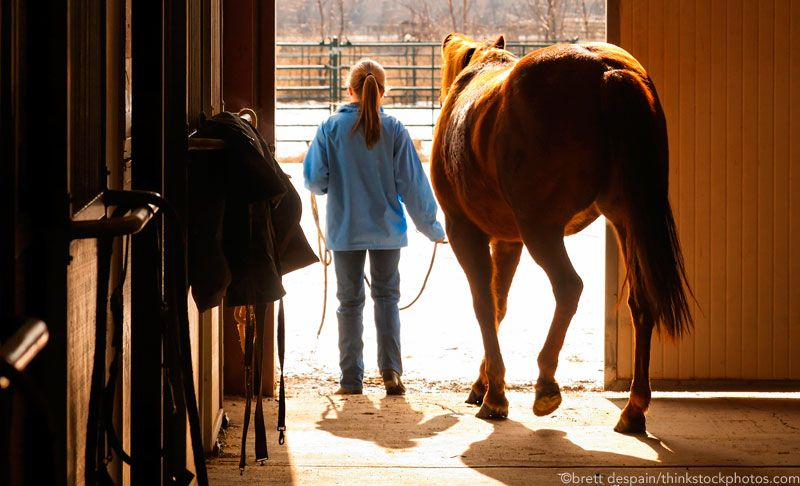 Cure winter boredom with barn aisle exercises