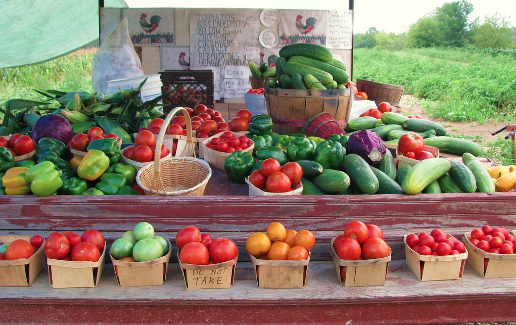 20 Things to Look for at Michigan Farmers Markets this Summer