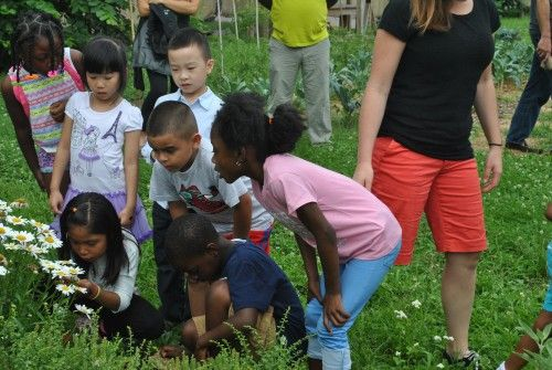 DC School Demonstrates Farm to School Success With the Help of Farm to School Grant