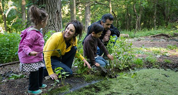 Celebrate Mother's Day in the Forest Preserves