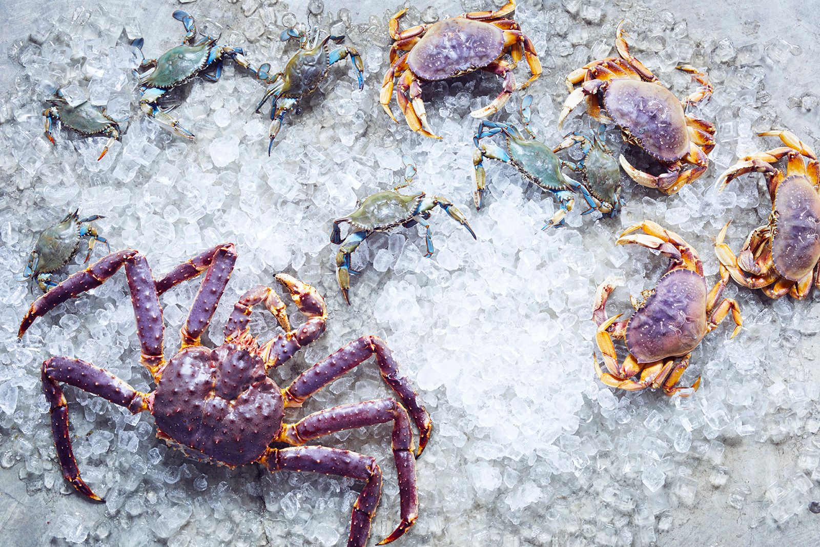 Your Guide to Crab (And How to Cook It)