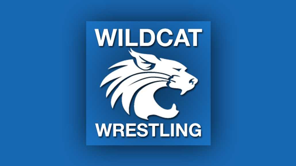 Wildcats' Houtz Eliminated at PIAA Tourney