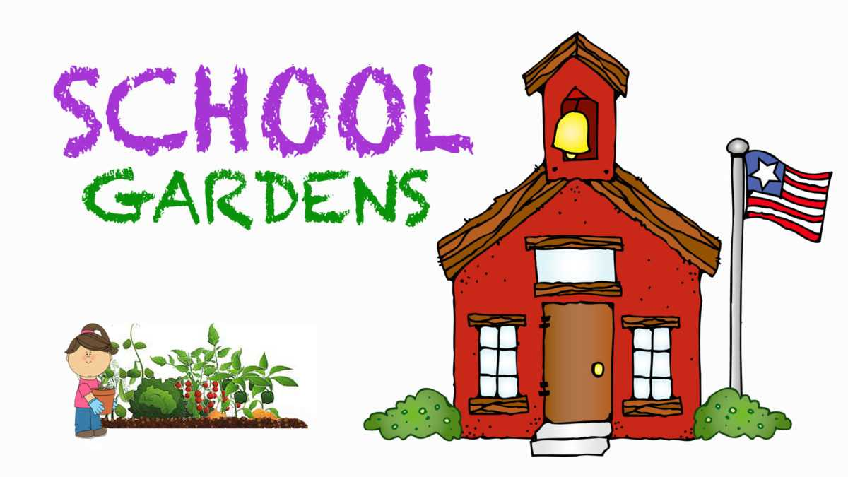 School Gardens Look to Engage Students