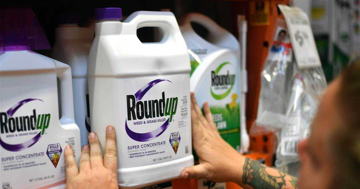 Judge allows lawsuits claiming Monsanto weed killer Roundup causes cancer to go forward