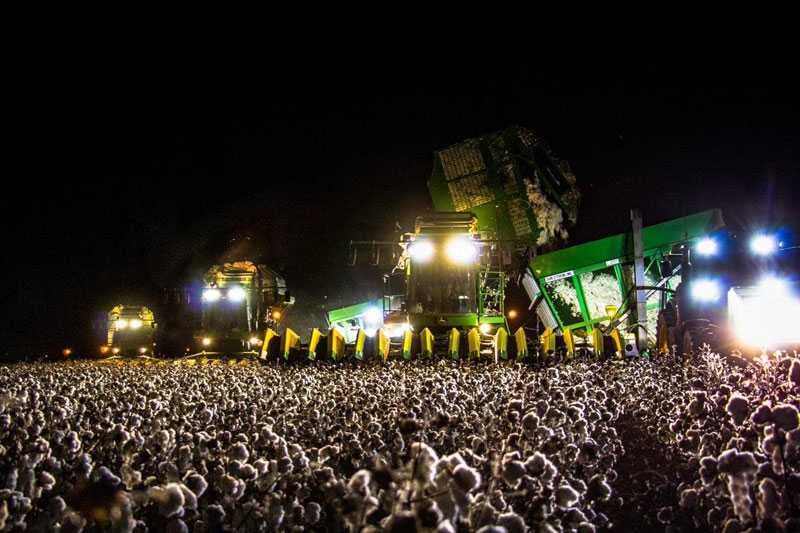 When You Realize the Concert Crowd is a Cotton Harvester at Night