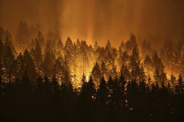 Oregon State studies embers to fight spread of wildfires