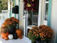 Doorscapes: Our Favorite Porch Decor Ideas