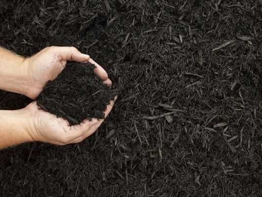 Gardening: How much mulch will you need?