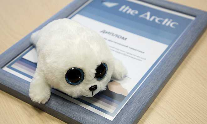 Arctic.ru awards young geologists studying the Arctic