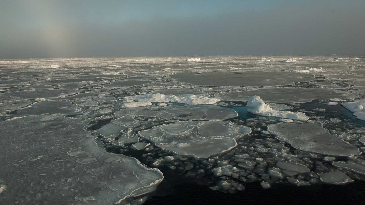 Thinner Arctic sea ice could mask long-term climate trends