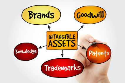 Expert Witnesses Role in Appraising Intangible Assets
