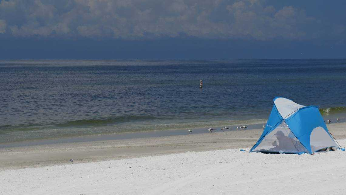 The coast is not clear. Red tide levels are rising off Anna Maria Island, FWC says