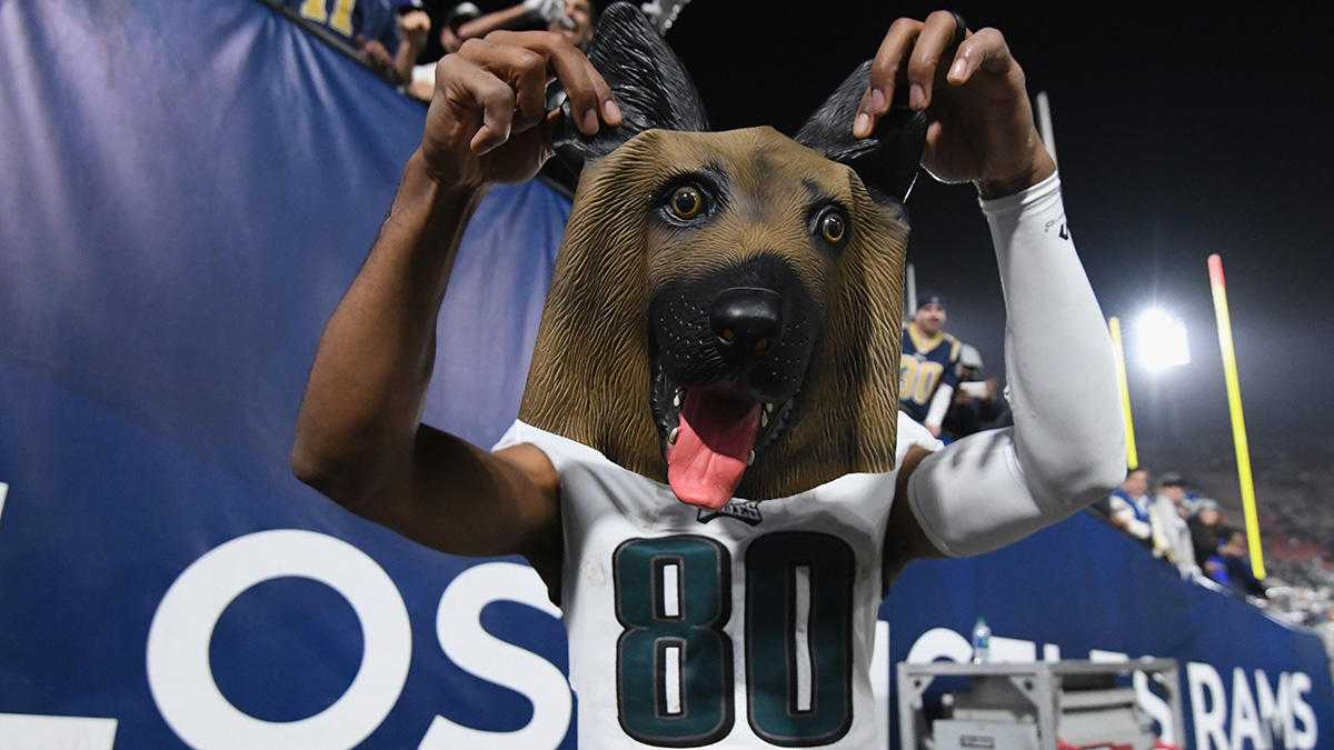 Philly Animal Shelter Bets on Underdog Eagles