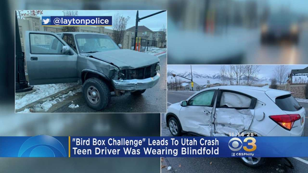 'Predictable Result': Blindfolded Utah Teen Crashes Car While Attempting 'Bird Box' Challenge