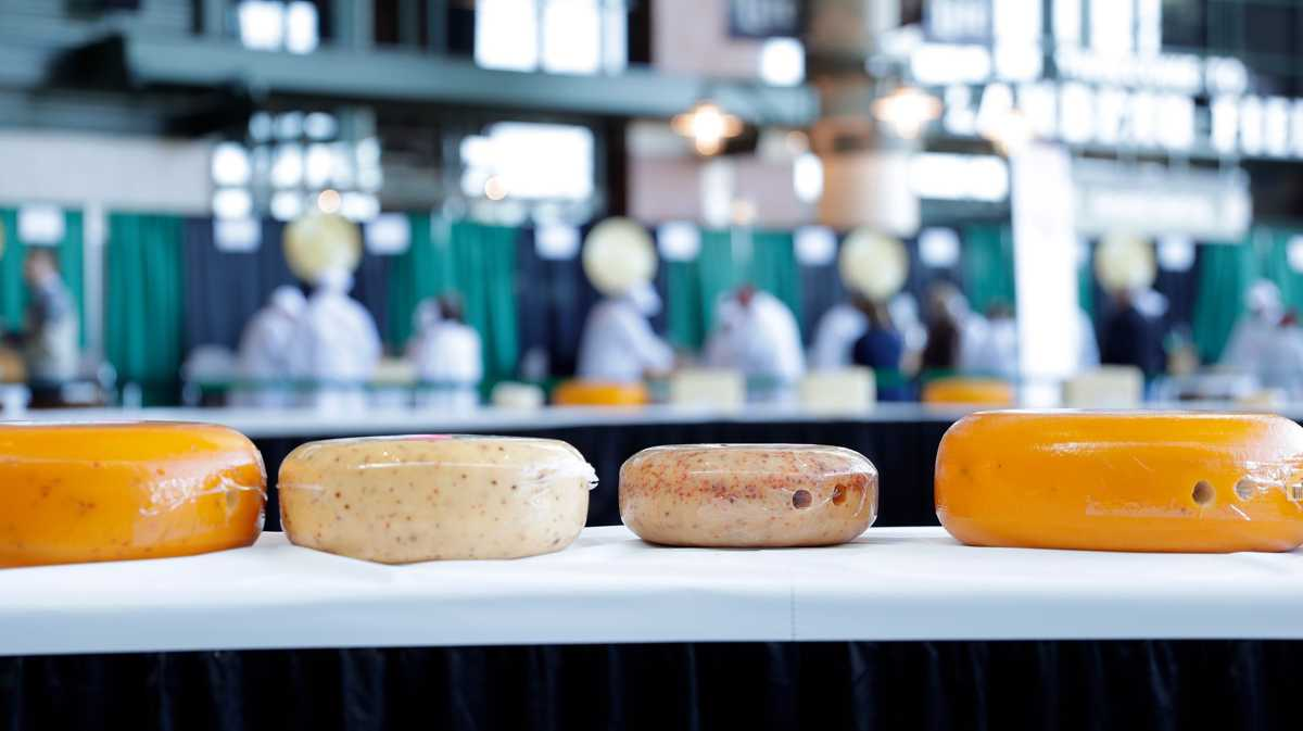 Are any of these 20 best cheeses made in America in your fridge?