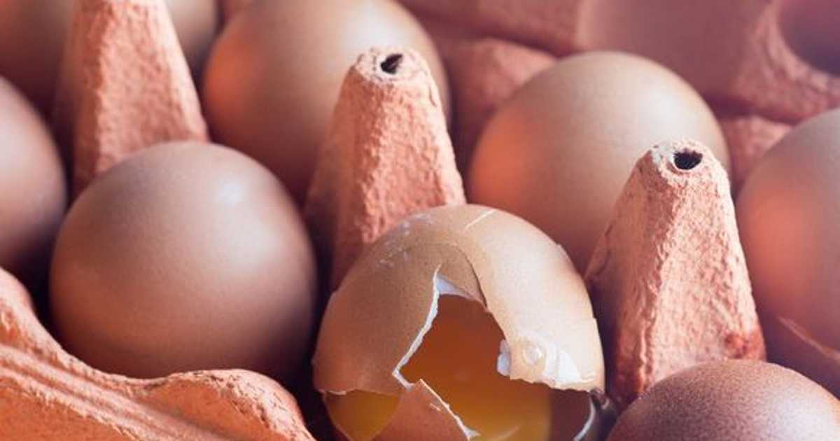 Eggs linked to higher risk of heart disease and early death, study says
