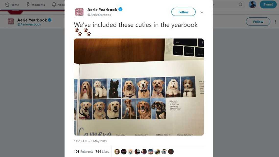 Therapy dogs for Parkland school shooting survivors get yearbook page