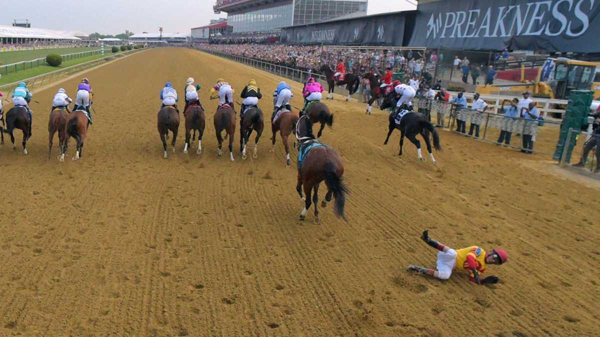 Schmuck: What exactly happened at the Preakness starting gate with Bodexpress?