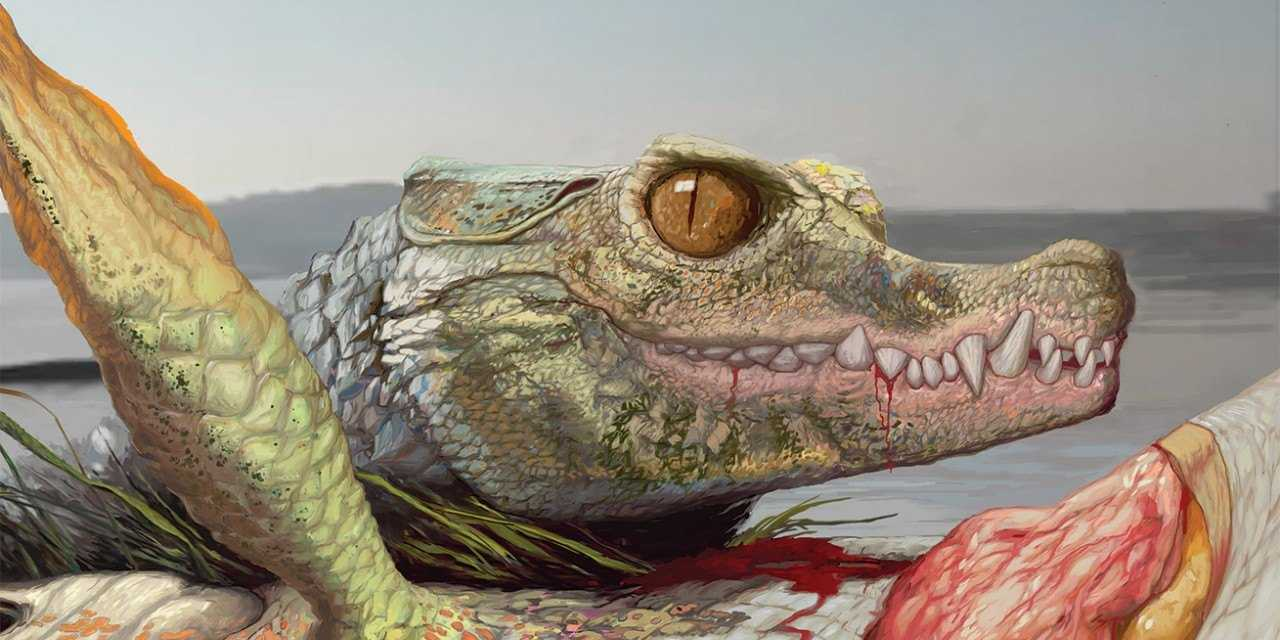Fossils of oddball crocodile relative found in Texas suburb