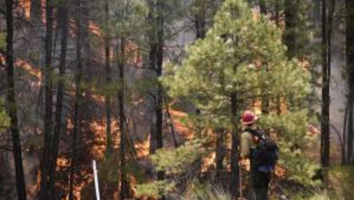 Wildfire forces partial closure of Coconino National Forest in Arizona