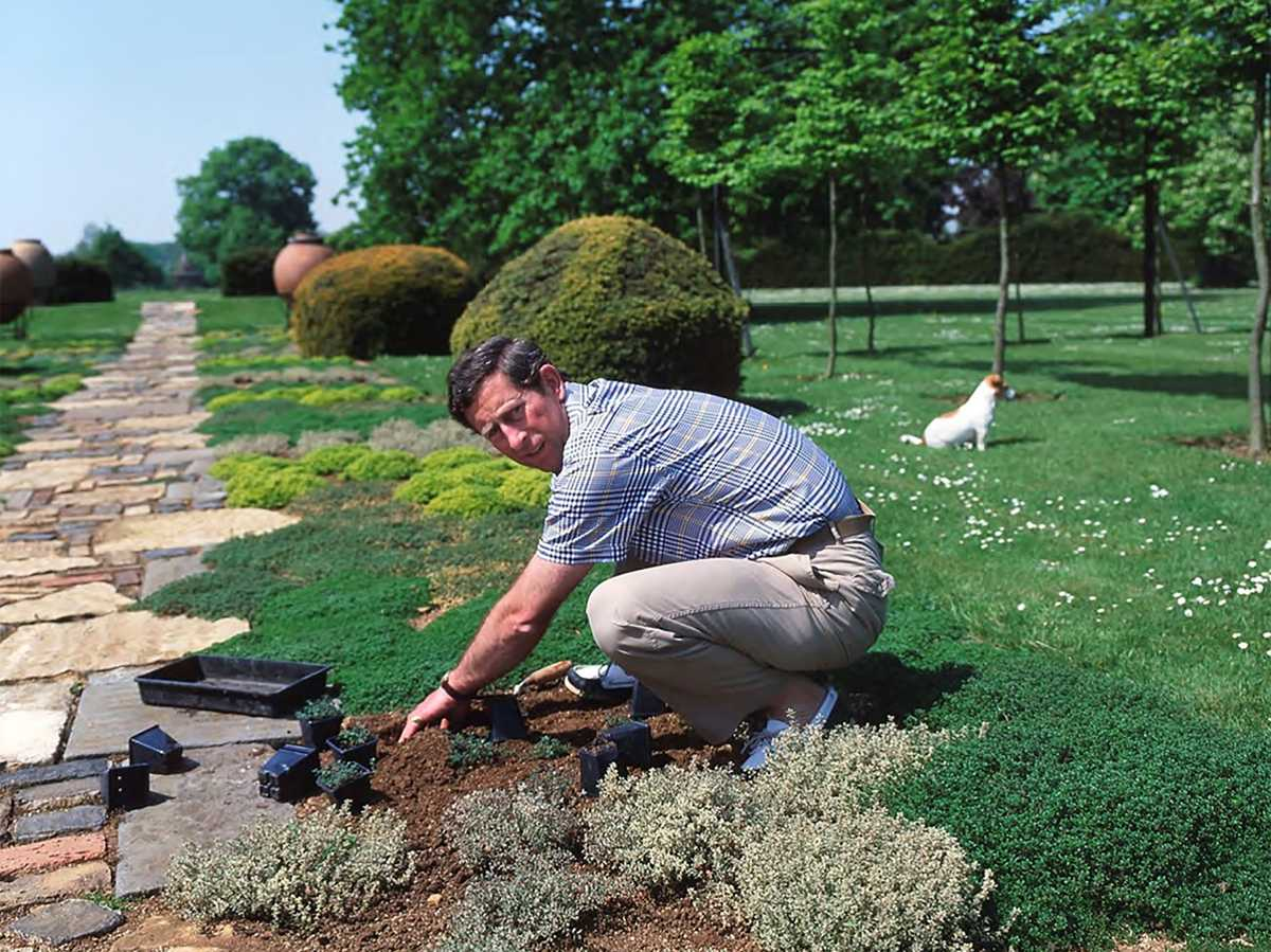 Charles pictured in early days of Highgrove to mark 25 years of gardens opening
