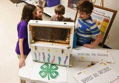 "Local youth and adult leaders help 4-H campers ""Bee"" knowledgeable"