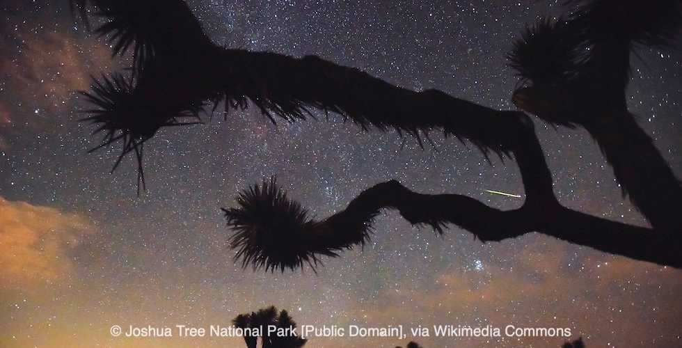 Perseids Meteor Shower: An Amazing Show in the August Night Sky