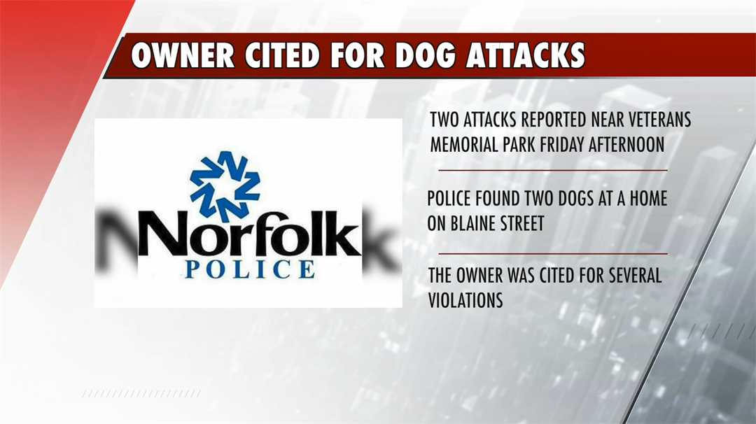Two dogs go on the attack in SE Norfolk