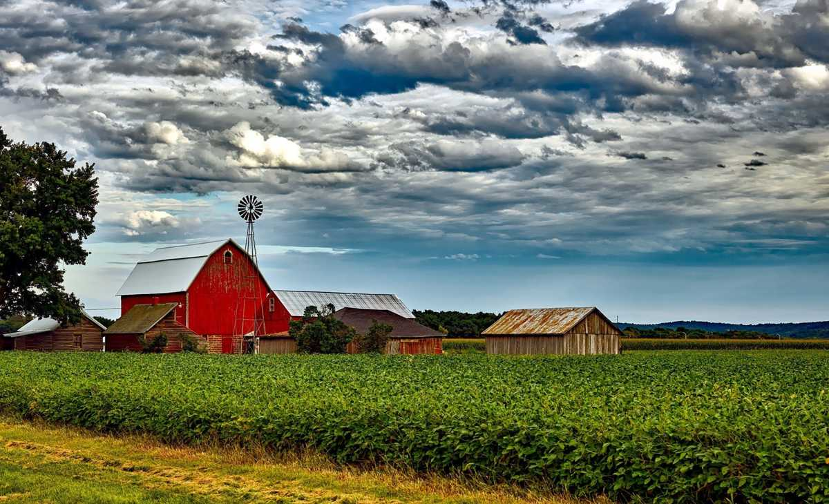 Report says farm bankruptcies up in Nebraska, Iowa