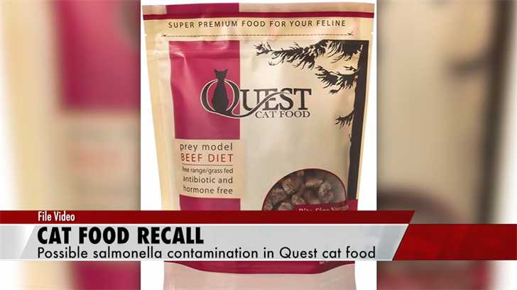 Quest Cat Food Recalled Over Salmonella Risks
