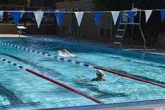 Duarte Pool Closed Tuesday and Wednesday from City of Duarte : Nixle