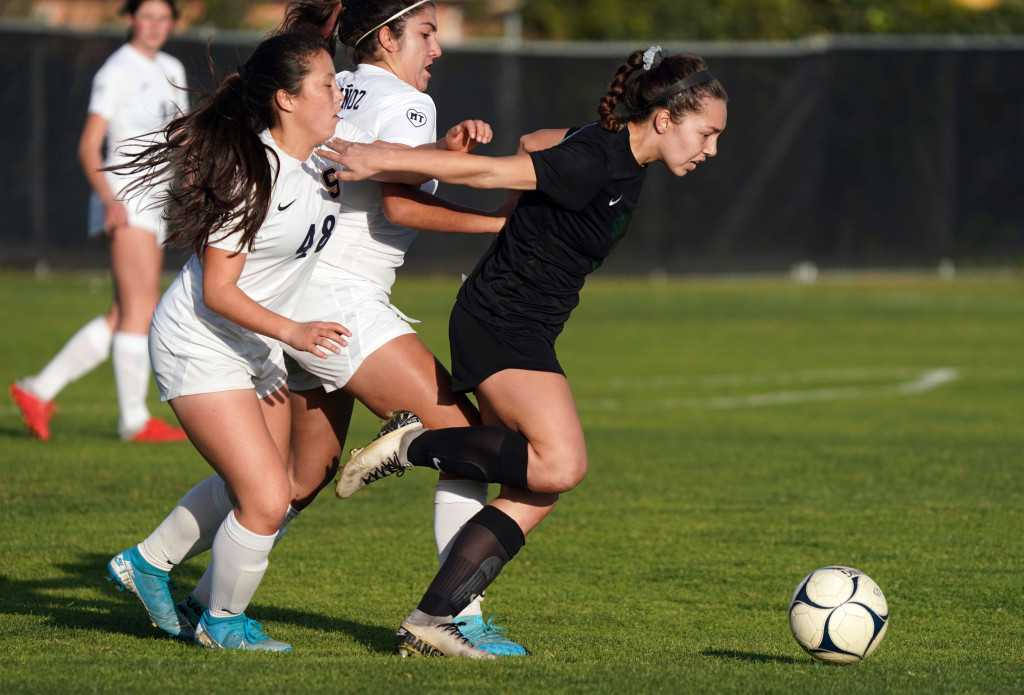 Skylar Briggs' goal lifts South Torrance girls soccer past Sonora in Division 3 playoffs
