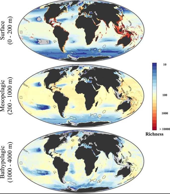 Ocean likely to heat up at 7 times its current rate, new study finds